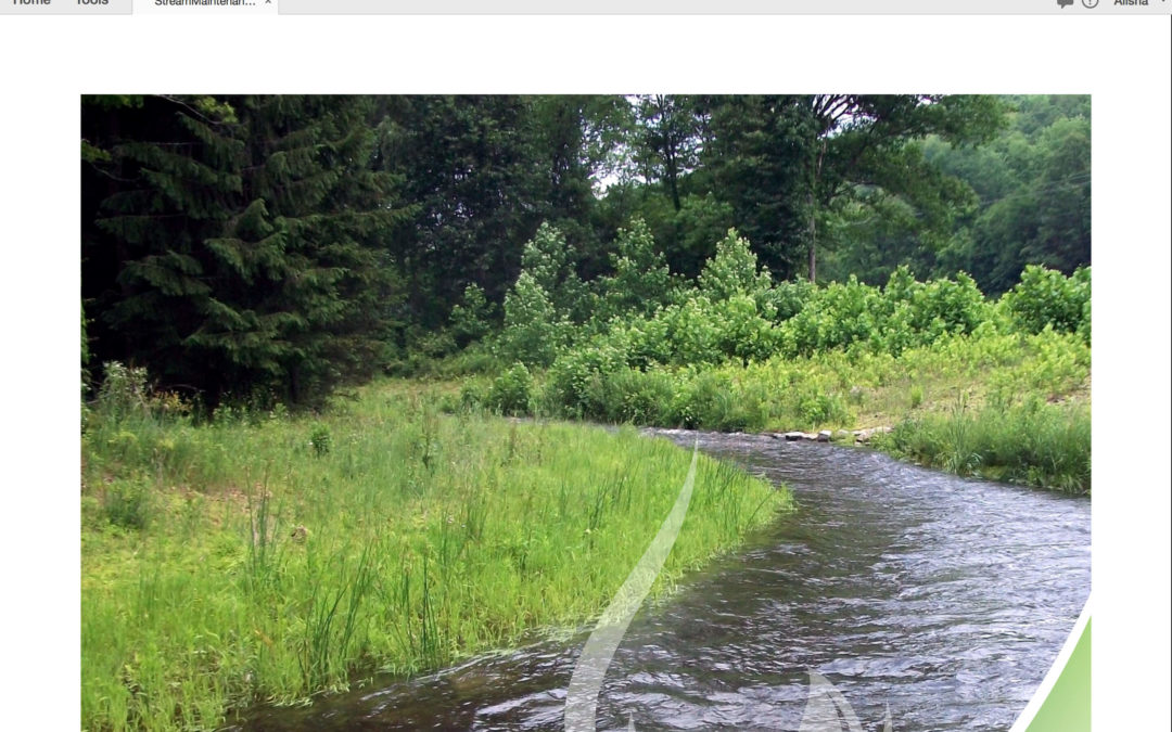 "DEP's ""Guidelines for Maintaining Streams in Your Community"""