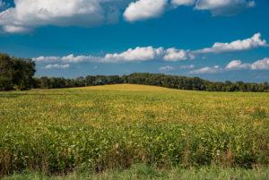 Soil Health Meeting @ Pine Barn Inn | Danville | Pennsylvania | United States