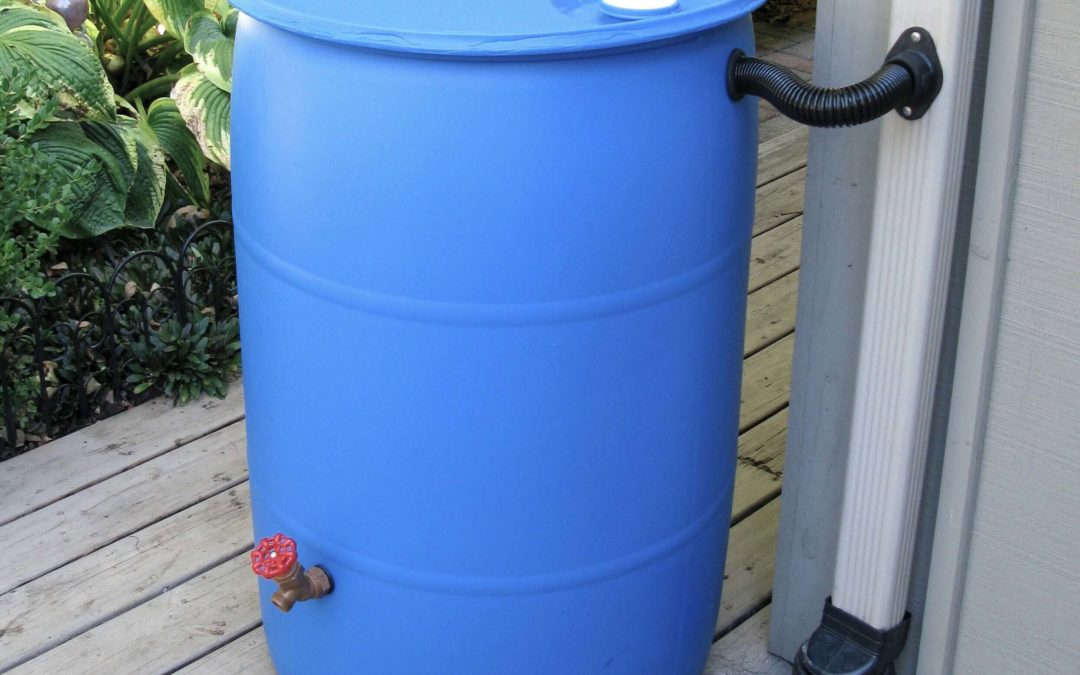 Make-And-Take Rain Barrel Workshop – Postponed