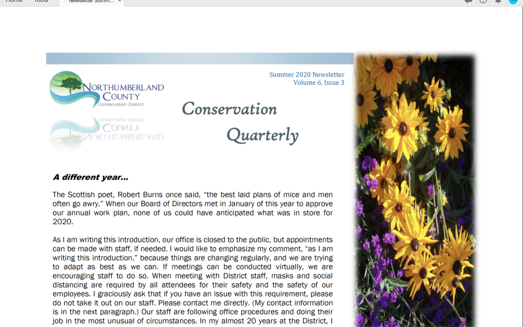 Summer 2020 Newsletter Volume 6, Issue 3